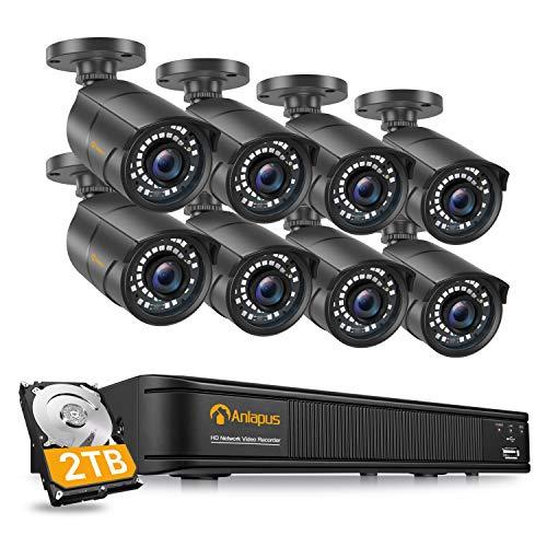 Anlapus 1080P Kit Videosorveglianza di Sicurezza PoE 8CH NVR 2TB HDD 8x 2MP Fotocamera Esterno, 30m Visione Notturna, Rilevamento del Movimento, App Gratuita