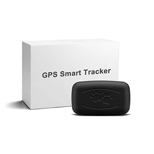 LMHOME GPS - Localizzatore satellitare per animali domestici, 50 g, mini trasmettitore leggero e impermeabile con portata illimitata.